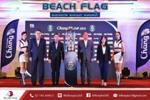 ธงชายหาด, ธงขนนก, Beach Flag